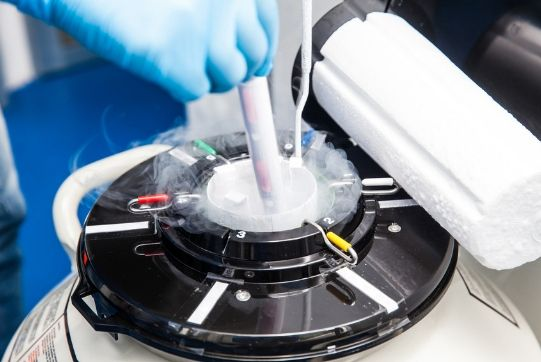 Frozen Embryo Transfer (FET)